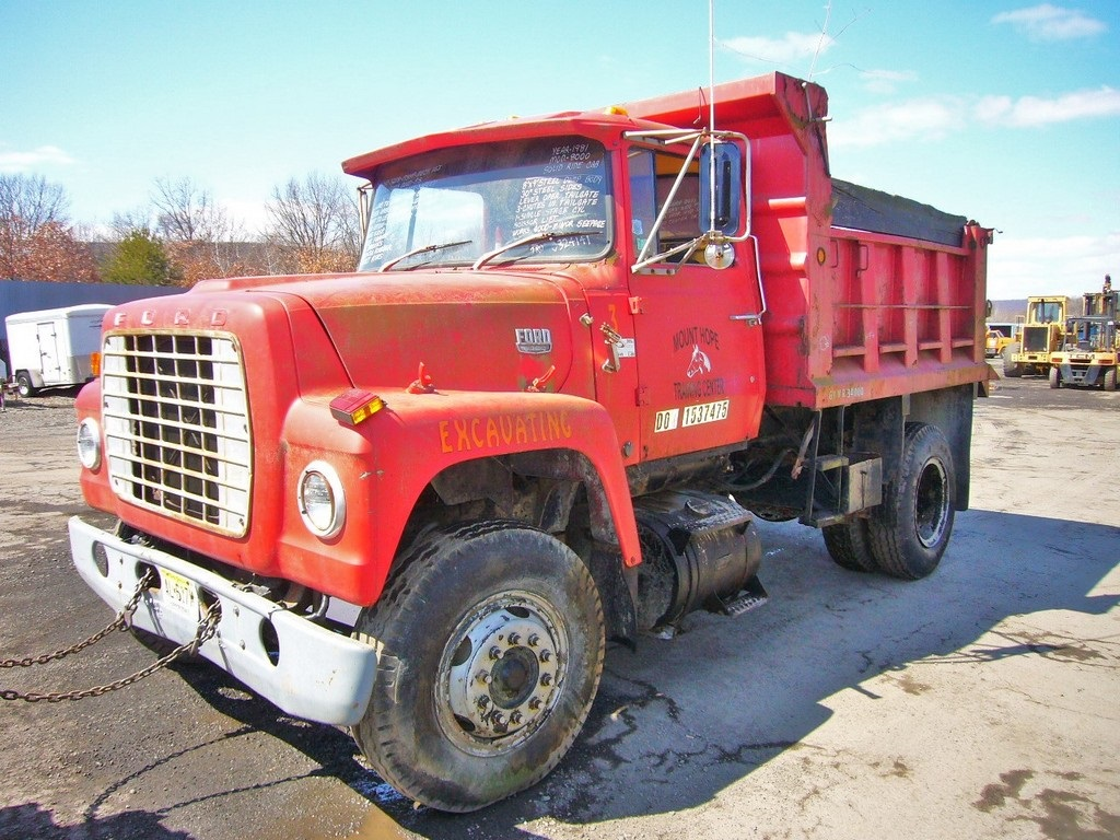 1981 Ford 8000 Single Axle Dump Truck for sale by Arthur ...